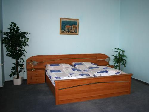 Foto - Ubytování  - Penzion STARR