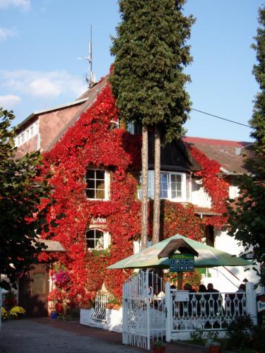 Foto - Ubytování  - Penzion Villa Marion