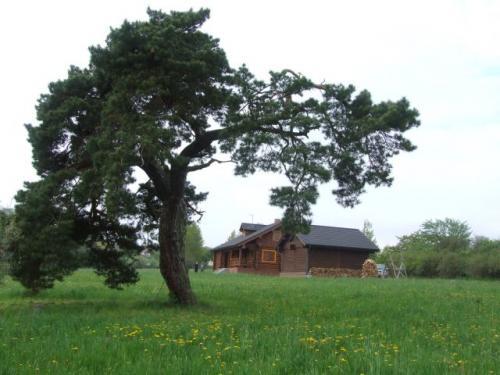 Foto - Ubytování  - Stylové ubytování v Bezděkově pod Třemšínem