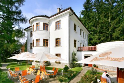 Foto - Ubytování ve Špindlerově Mlýně - Hotel Bedřiška